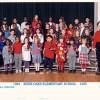 Elafros 1995