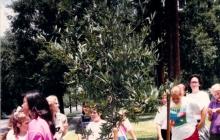 5th Grade Class Gift 1989